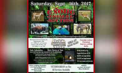 Exotic Animal Auction @ Sycamore Springs Ranch | Locust