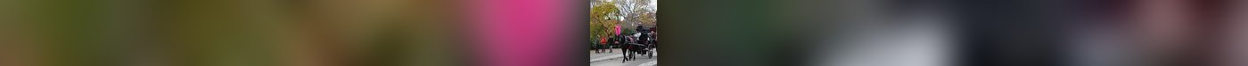 VIP Horse Drawn Tour (45 Mins)- Gift Certificate