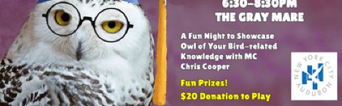NYC Audubon Bird Trivia Night @ The Gray Mare | Manhattan